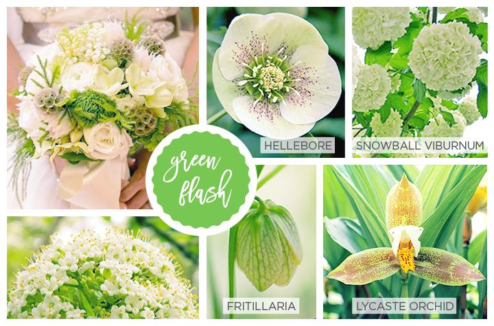 Greenery il colore dell 39 anno 2017 matrimonio a bologna blog for Pantone 2017 greenery