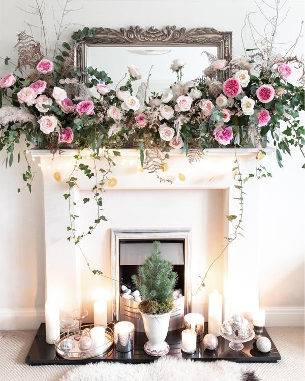 Rose inglesi per la decorazione natalizia