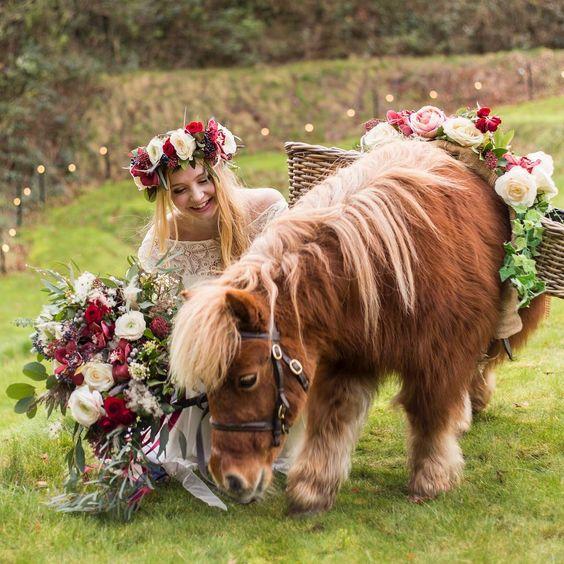 Animali al matrimonio: non solo cani!